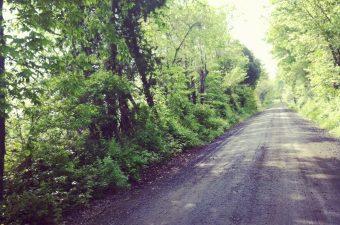 Dirt Road Medicine