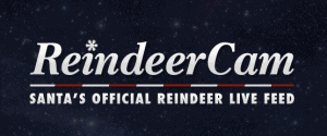 Live Reindeer Cam, Watch Santa Feed The Reindeer!