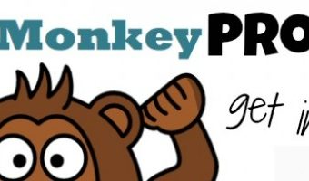Flat Monkey Project: Get Involved!