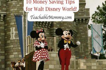 Disney Trip on a Budget!