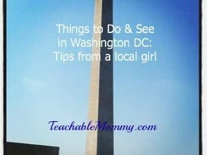 Things to Do and See in Washington DC: Tips from a Local Girl