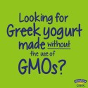 You Won't Find GMOs in Stonyfield Yogurt!