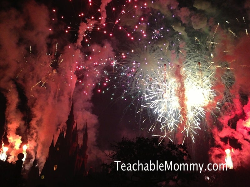 Disney Vacation Questions Answered