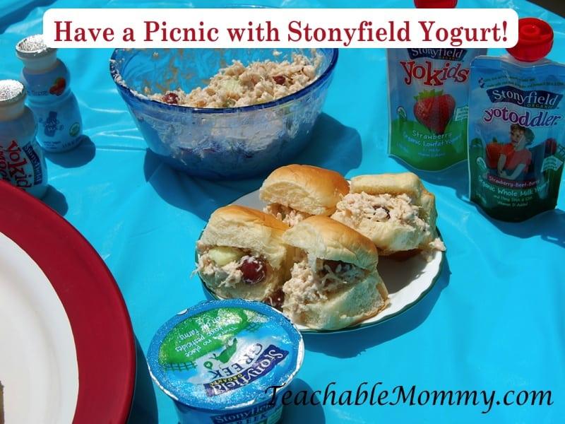 Picnic recipes, healthy picnic, Chicken Salad with greek yogurt, Fruit dip with greek yogurt, #StonyfieldBlogger