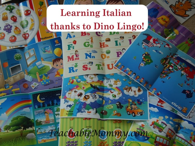Dino Lingo Language Learning Sets