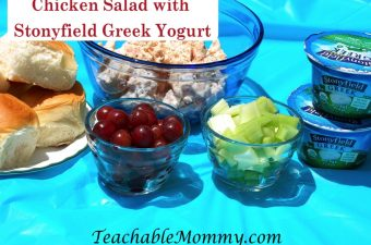 Have a Healthy Picnic with Stonyfield Yogurt!