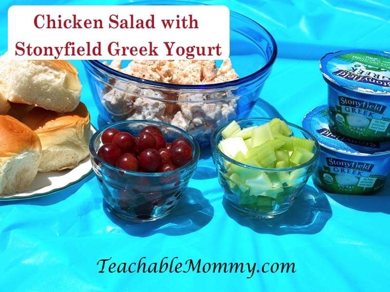 Picnic recipes, healthy picnic, Chicken Salad with greek yogurt, #StonyfieldBlogger