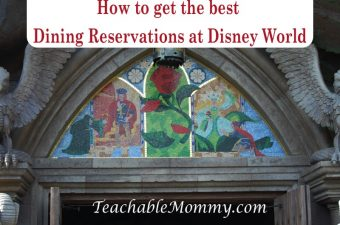 Tips to Get the Advanced Dining Reservations You Want at Walt Disney World