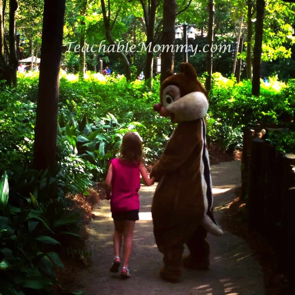 Animal Kingdom Character Trail, Do you have to plan everything for a Disney Vacation? Disney Vacation Planning, How not to stress planning a Disney World Vacation