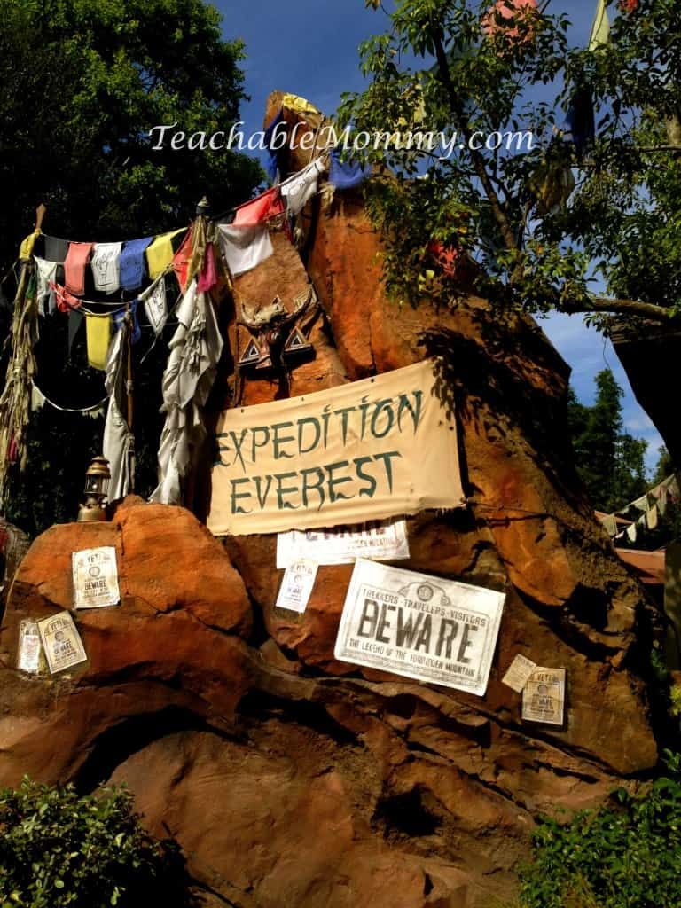 Expedition Everest, Do you have to plan everything for a Disney Vacation? Disney Vacation Planning, How not to stress planning a Disney World Vacation, fastpass