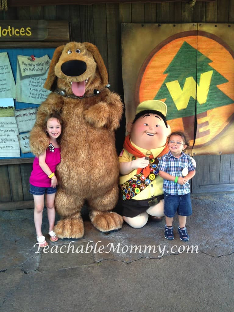 Walt Disney World free activities, Wilderness Explorers at Animal Kingdom