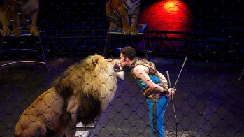Recap: Ringling Bros and Barnum & Bailey presents Legends!