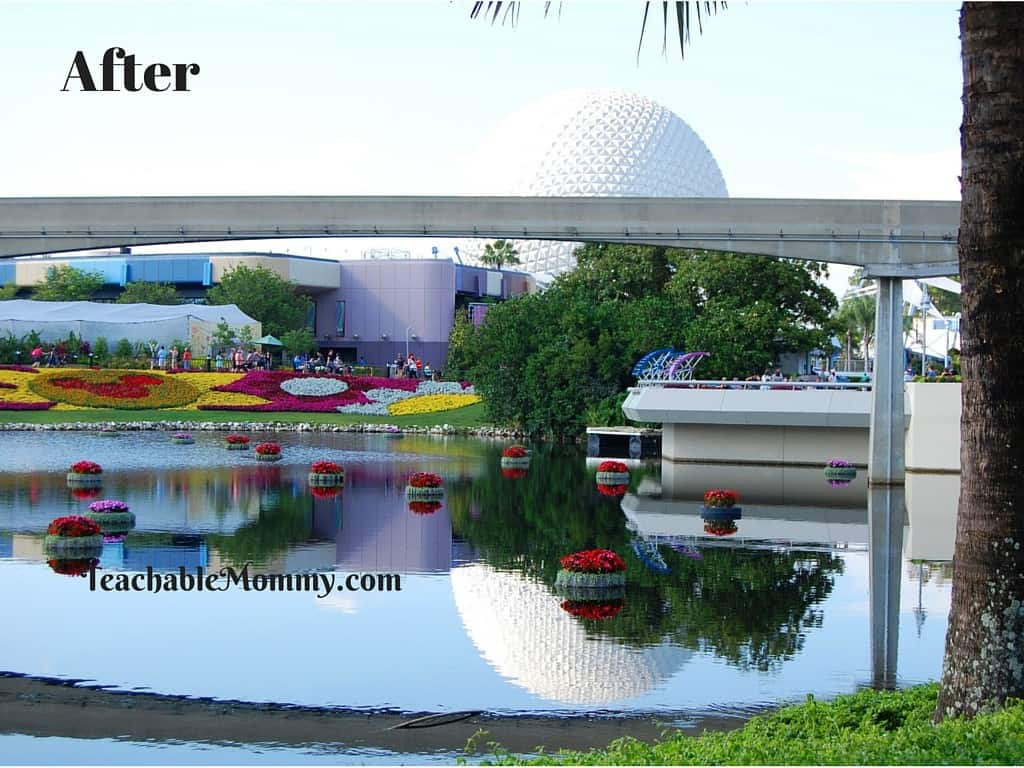 Epcot, Epcot Flower and Garden Festival, Adobe Creative Cloud Photography Plan