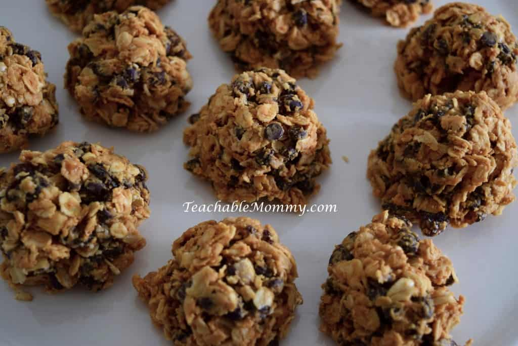 No Bake Oatmeal Bites Recipe