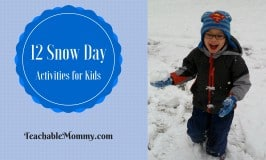 12 Snow Day Activities for Kids!