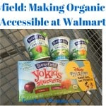 Stonyfield is Making Organic Accessible at Walmart