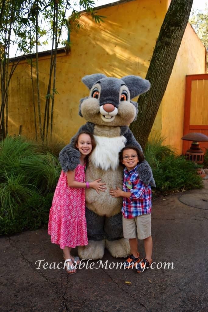 Animal Kingdom Safari, Disney's Animal Kingdom, Kilimanjaro Safaris, Animal Kingdom animals, Thumper Character Meet