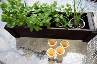 DIY Deck Organic Herb Garden!