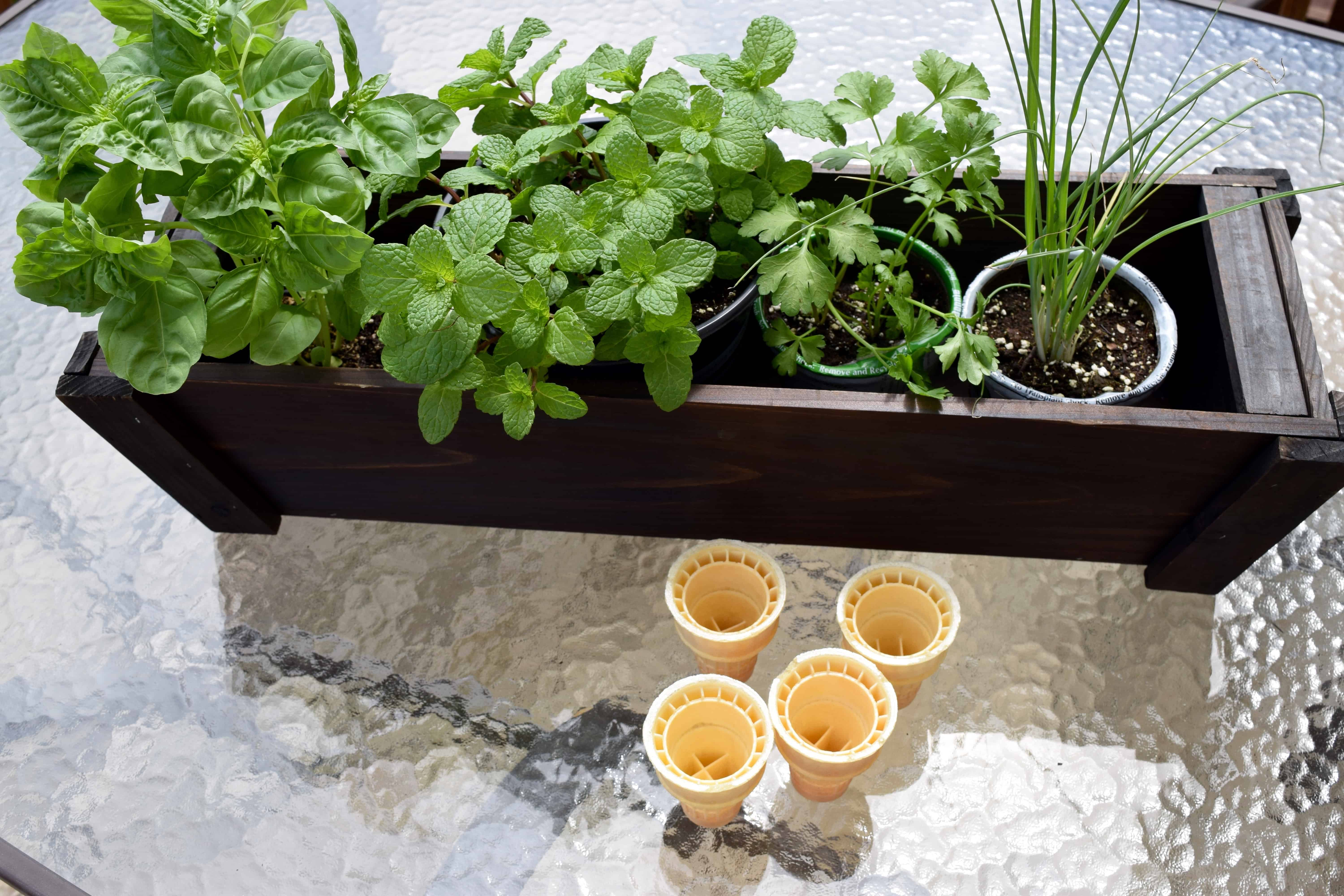 fancy cool idea awesome magz herbs design planter gardens vegetable herb set best ideas rectangle patio cedar of indoor small wood garden home diy for magnificent boxes boise kitchen