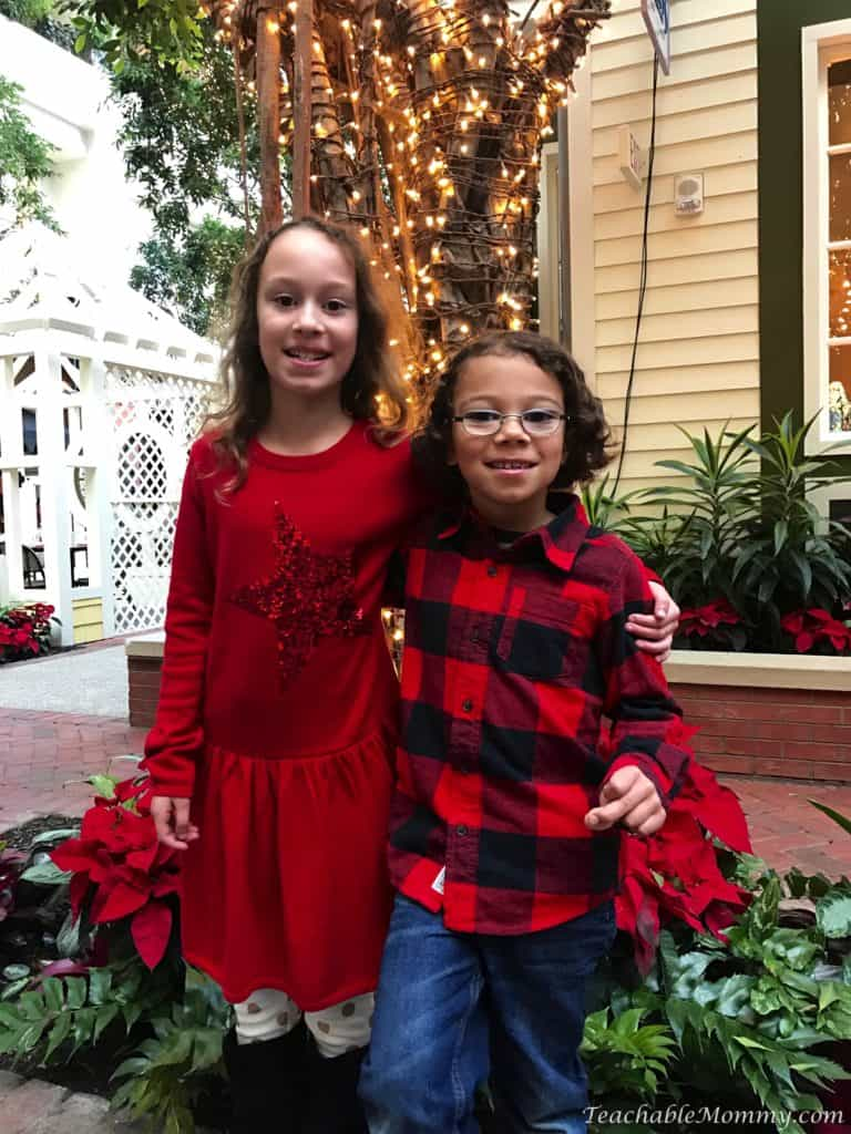 Gaylord National Christmas on the Potomac