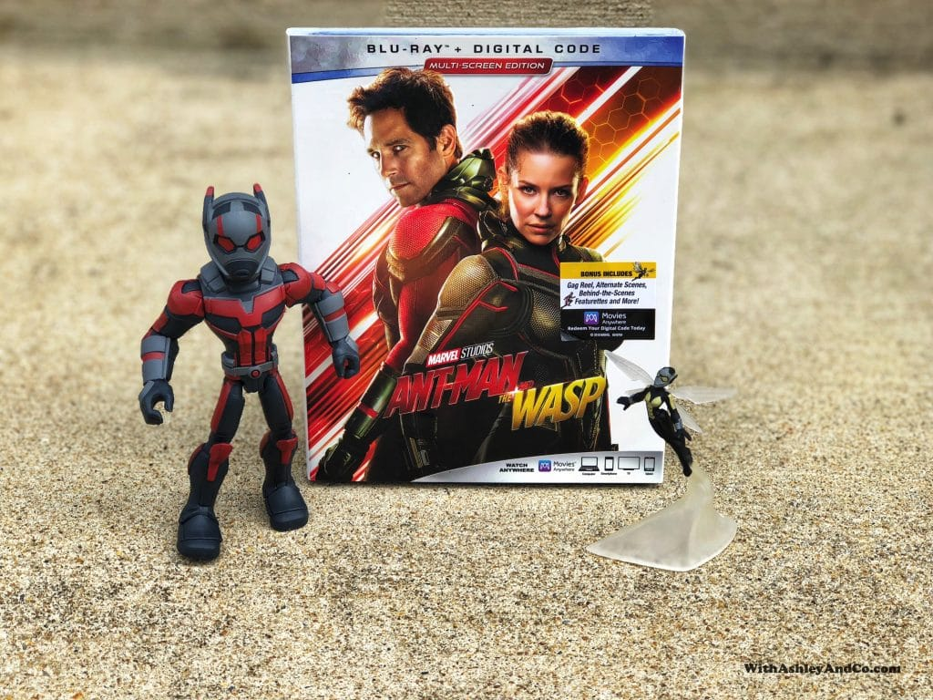 Ant-Man and The Wasp Movie Night