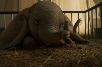 New Dumbo Trailer, Poster and Trailer Reaction!