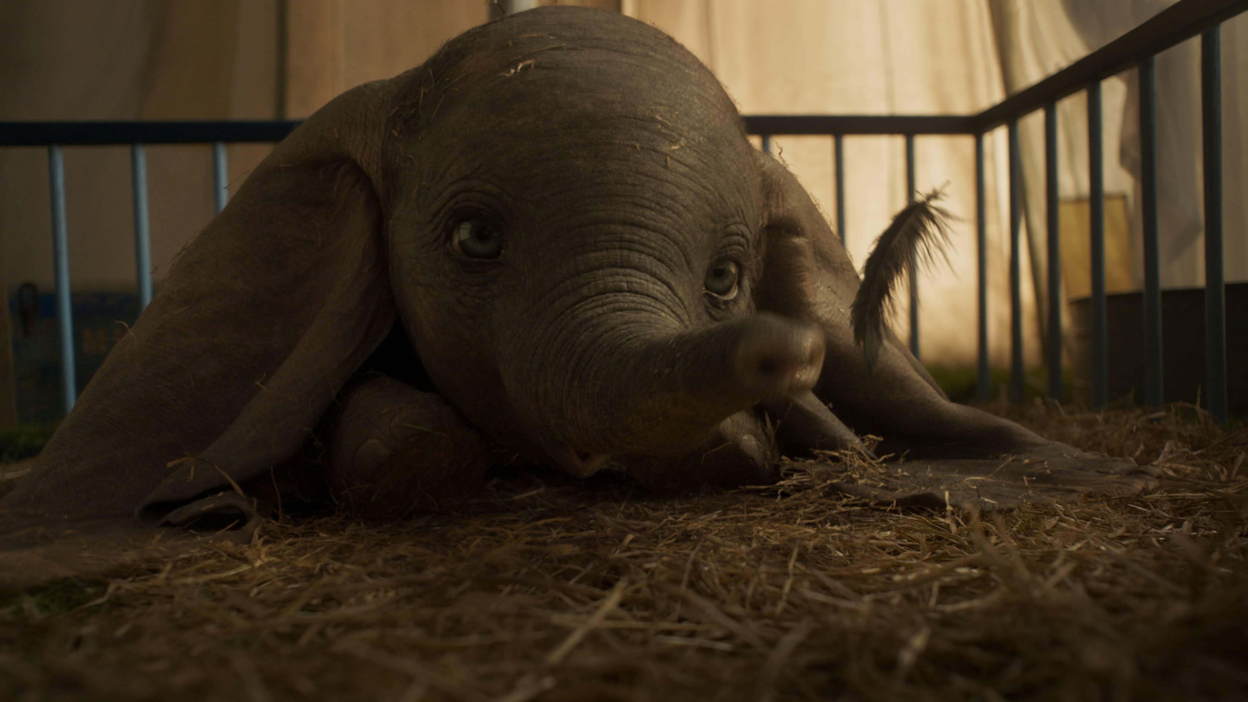 new Dumbo Trailer