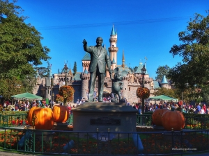 Beginner's Guide to Disneyland MaxPass