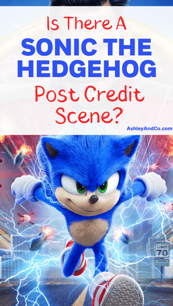 Sonic The Hedgehog Post Credit Scene