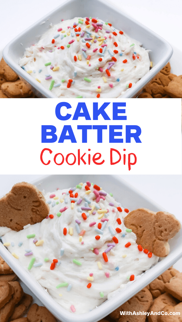 Cake Batter Cookie Dip Pin