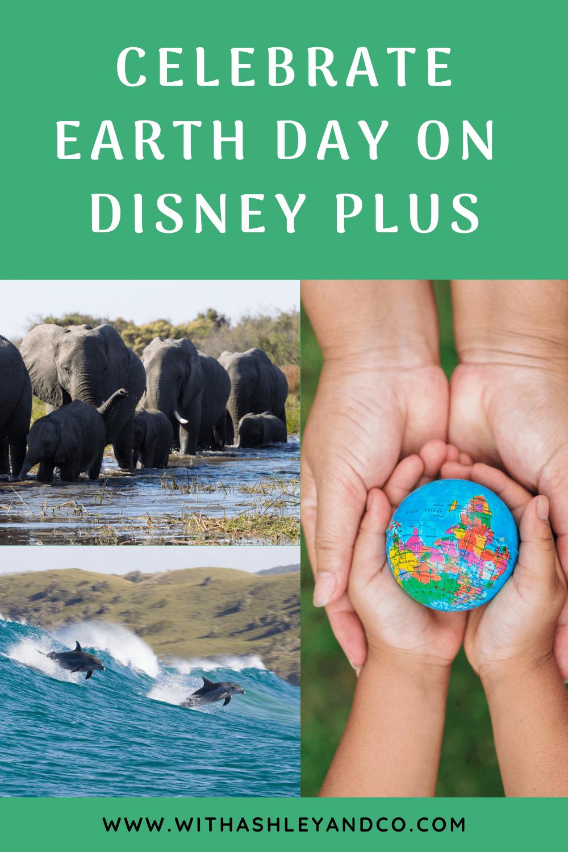 Earth Day on Disney Plus Pin