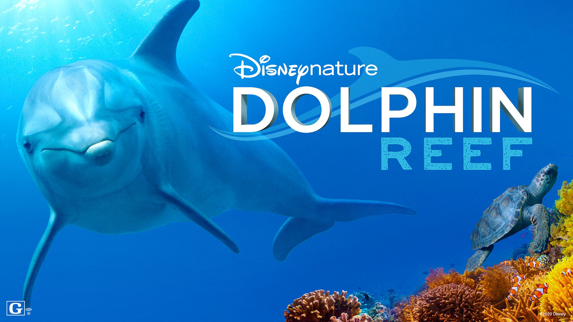 Earth Day Disney Plus Dolphin Reef