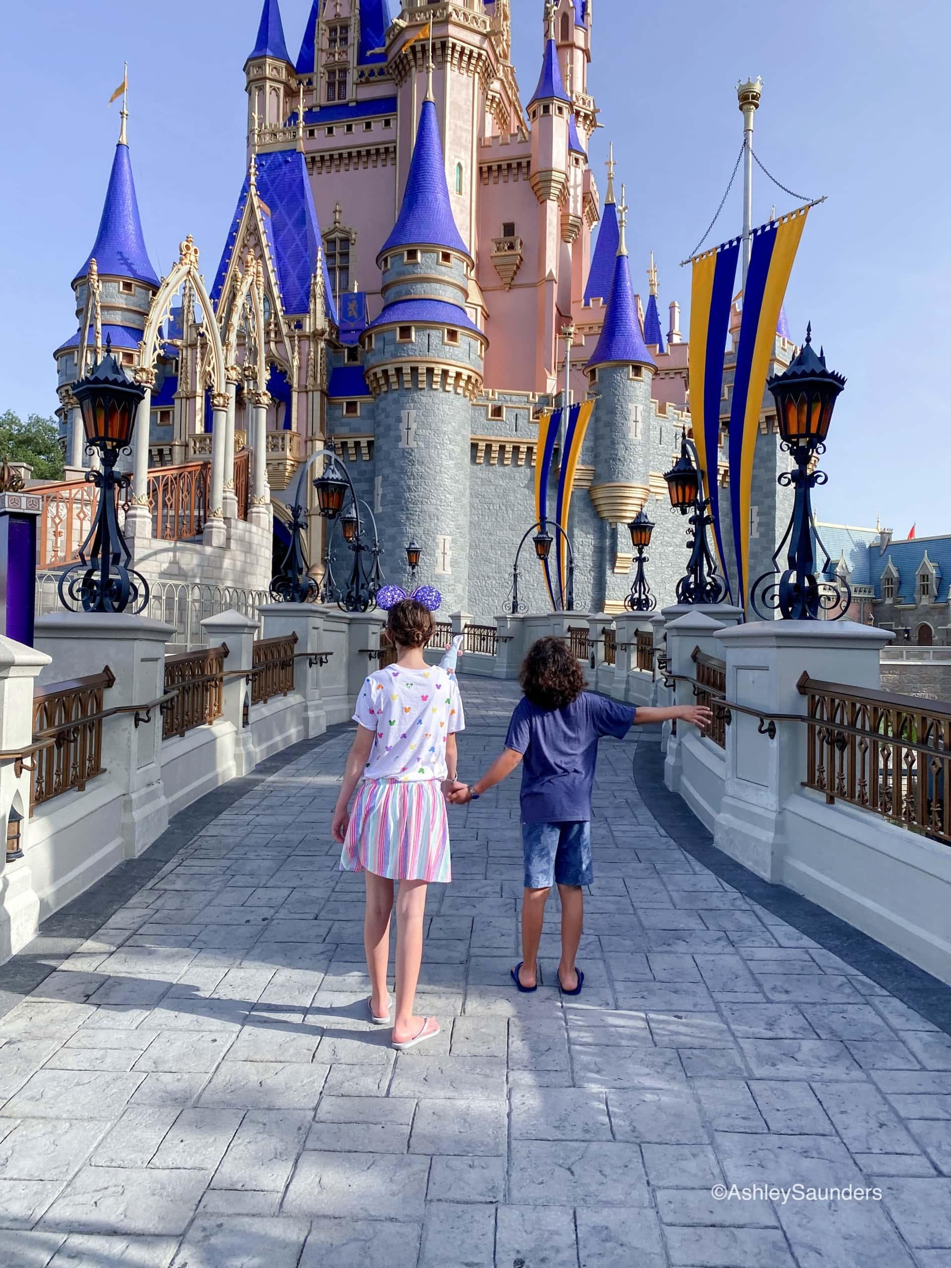 Visiting Disney World in 2020