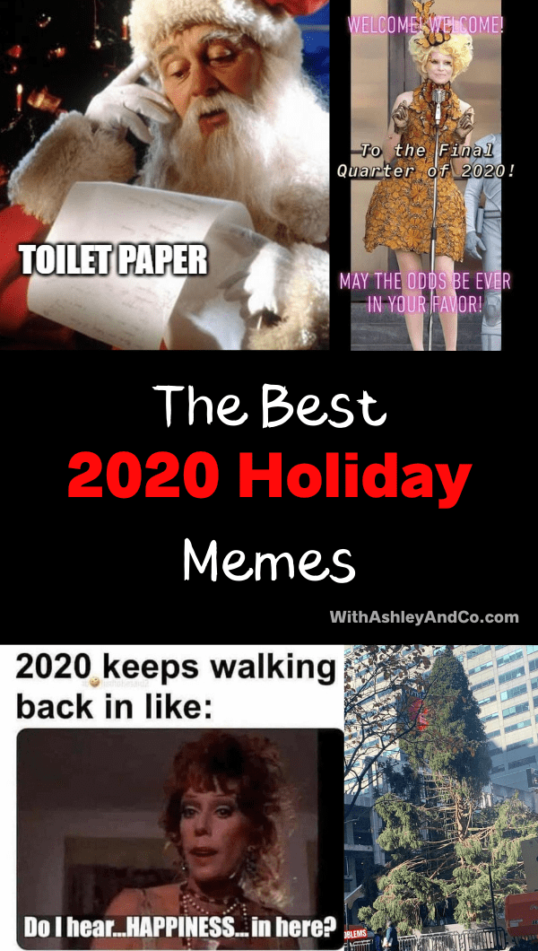Best 2020 Holiday memes