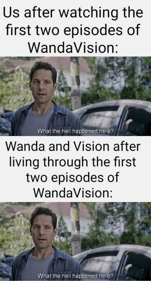 WandaVision Memes ant-man