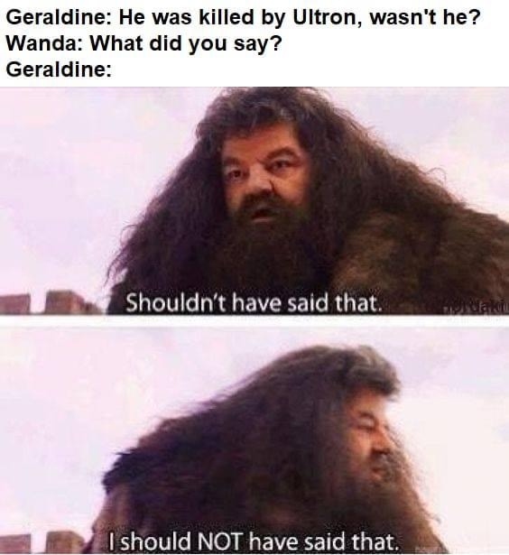 WandaVision Memes Harry Potter