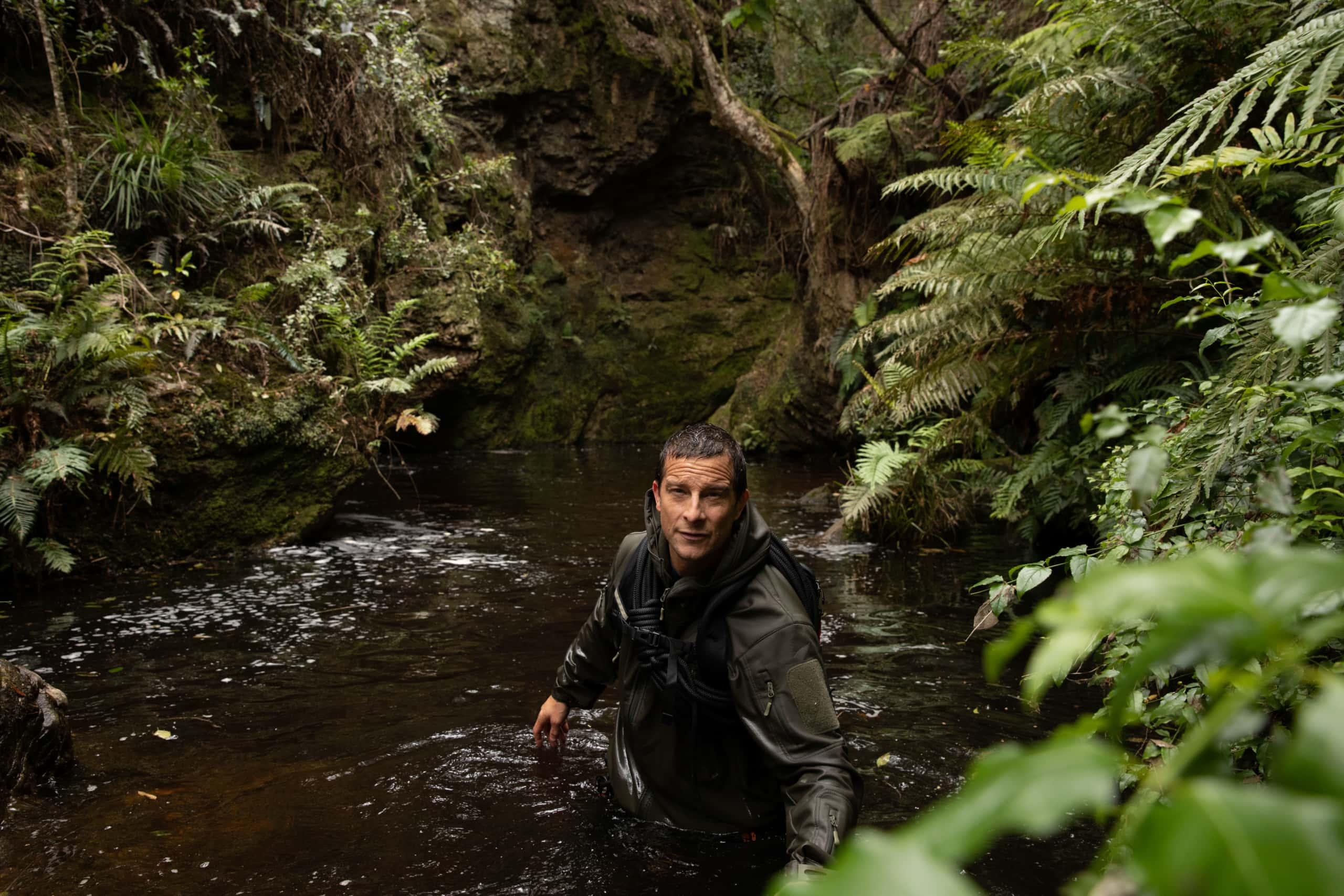 Animals On The Loose Movie Review Bear Grylls