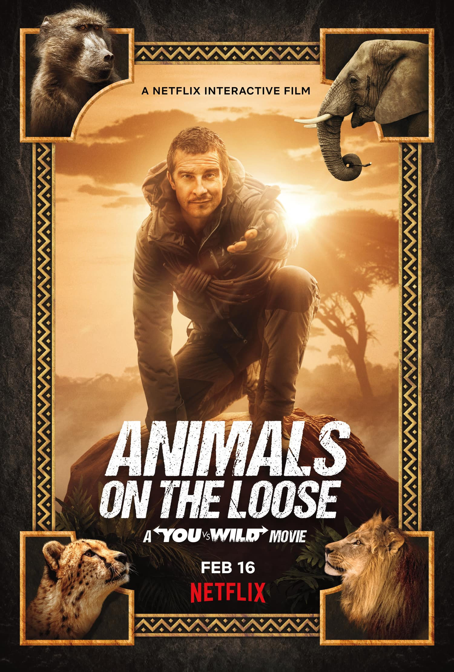 animals on the loose you vs wild poster