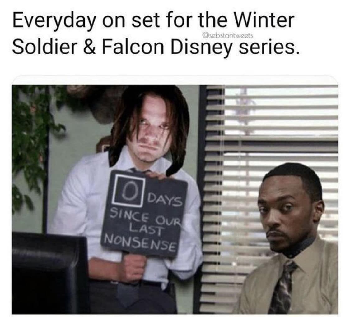 Falcon and The Winter Soldier Memes