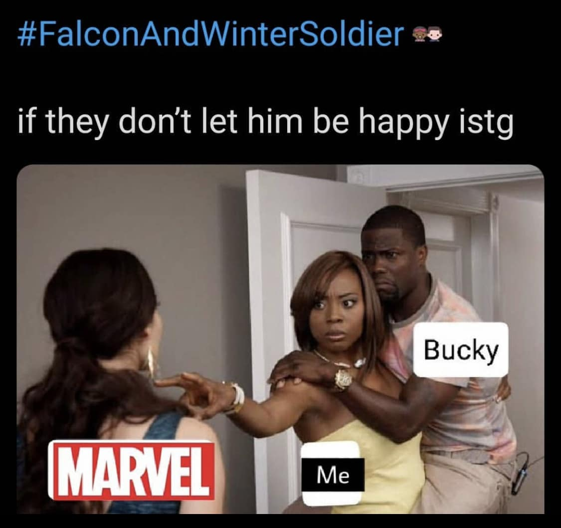 falcon and the winter soldier memes Bucky happiness