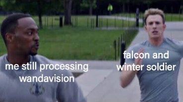 falcon and winter soldier meme Captain America falcon