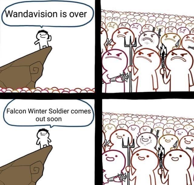 falcon and winter soldier meme wandavision