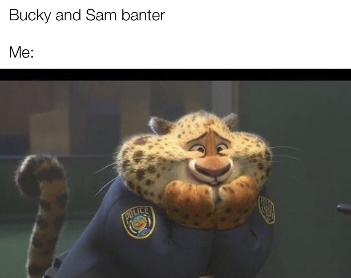 falcon and winter soldier memes 13