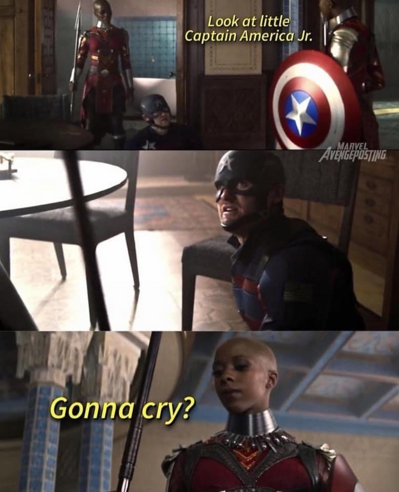 falcon and winter soldier memes dora milaje fight