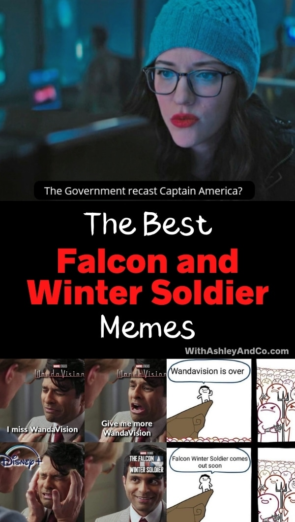 Best Falcon and Winter Soldier Memes