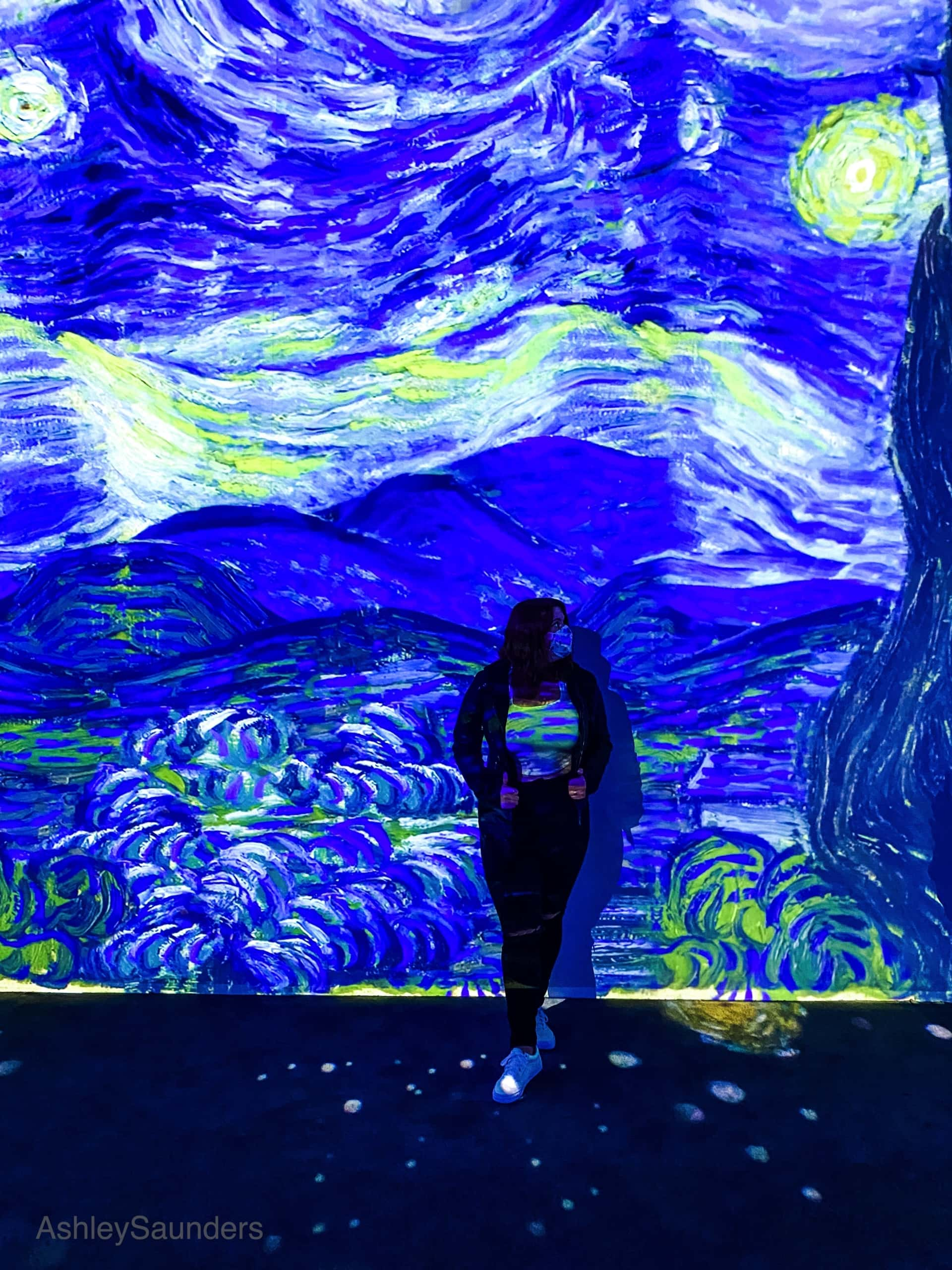 Van Gogh The Immersive Experience Review starry night